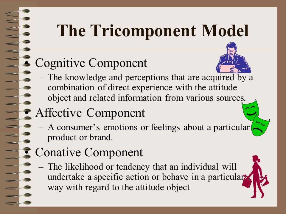 The Tricomponent Model Cognitive Component –The knowledge and perceptions that are acquired by a combination of direct experience with the attitude ob