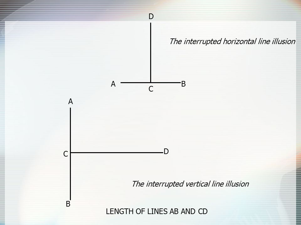 AB C D A B C D The interrupted horizontal line illusion The interrupted vertical line illusion LENGTH OF LINES AB AND CD