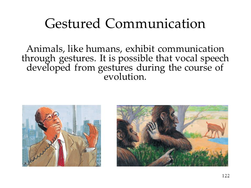 122 Gestured Communication Animals, like humans, exhibit communication through gestures. It is possible that vocal speech developed from gestures duri