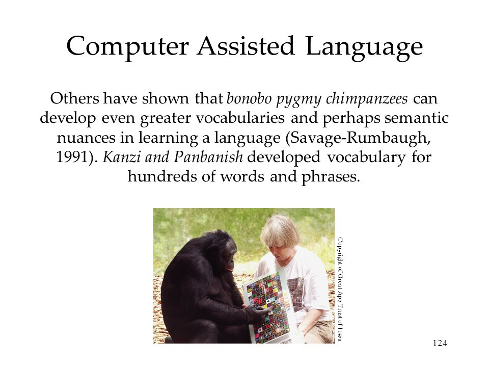 124 Computer Assisted Language Others have shown that bonobo pygmy chimpanzees can develop even greater vocabularies and perhaps semantic nuances in l
