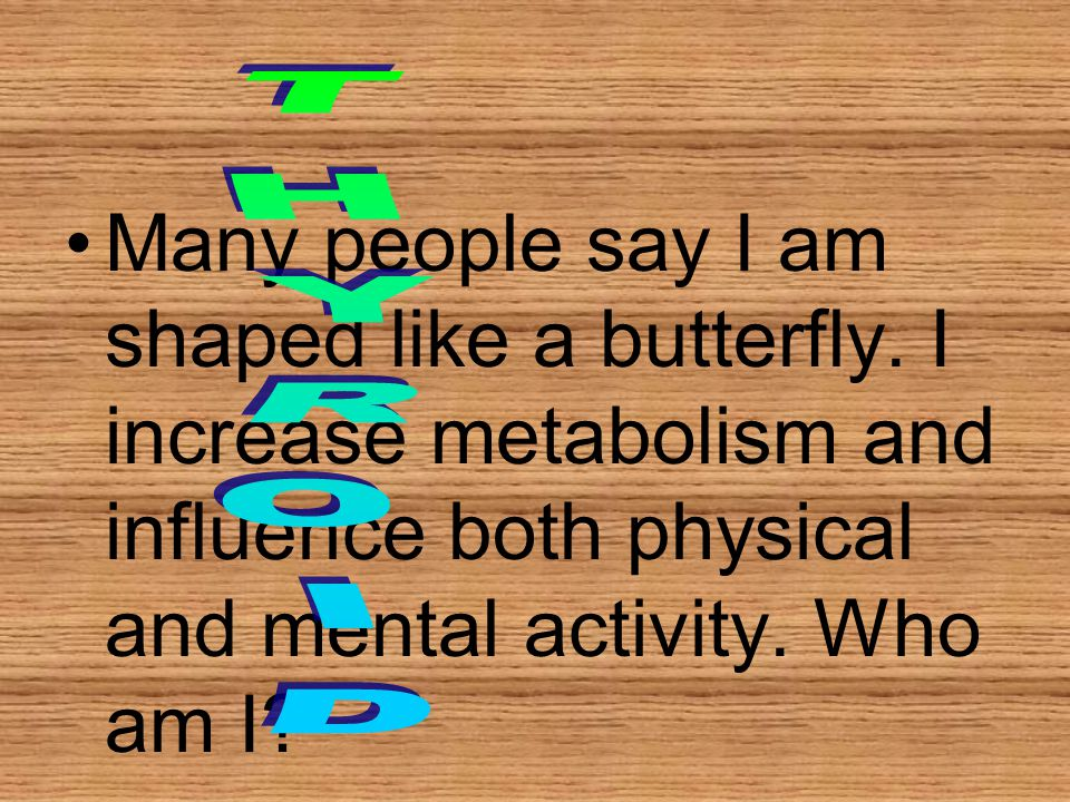 Many people say I am shaped like a butterfly. I increase metabolism and influence both physical and mental activity. Who am I?
