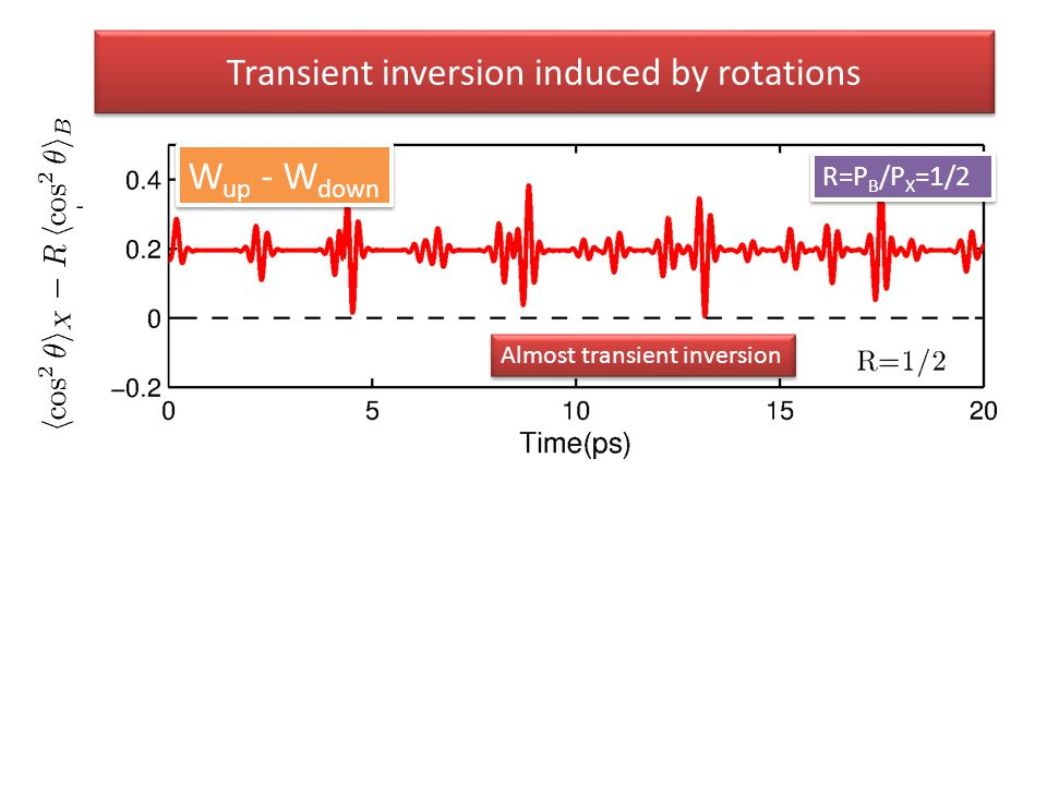 R=P B /P X =1/2 Almost transient inversion Transient inversion induced by rotations W up - W down