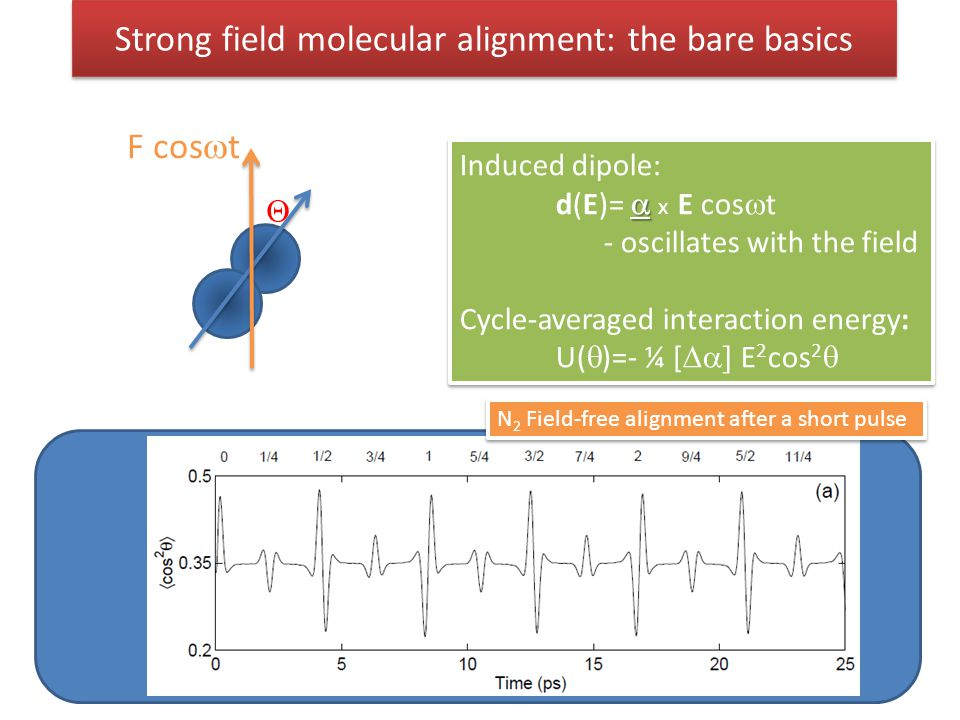 Strong field molecular alignment: the bare basics Induced dipole:  d(E)=  x  E cos  t - oscillates with the field Cycle-averaged interaction ener