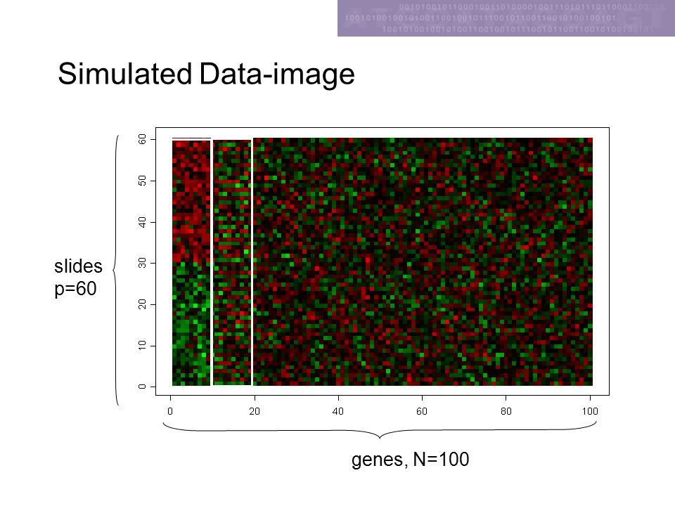 Simulated Data-image slides p=60 genes, N=100