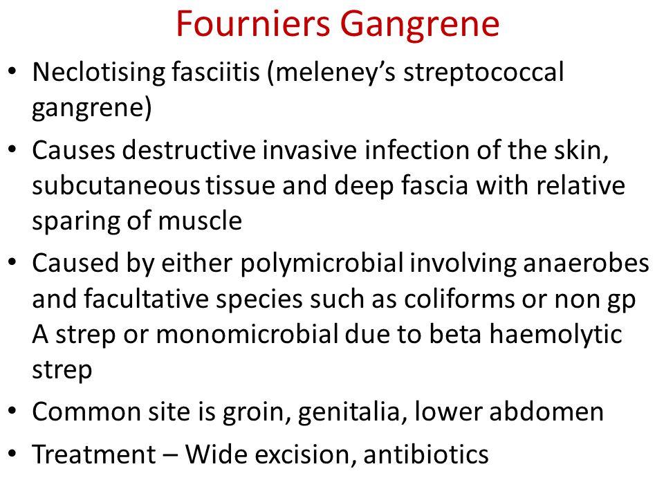 Malignant Lesions 1.Basal cell carcinoma 2.Squamous cell carcinoma 3.Virrucous carcinoma 4.Kerato acanthoma 5.Malignant melanoma