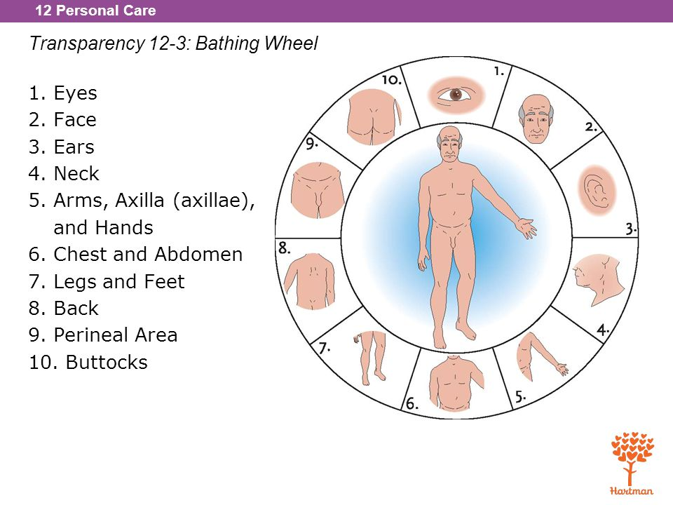 12 Personal Care Transparency 12-3: Bathing Wheel 1.