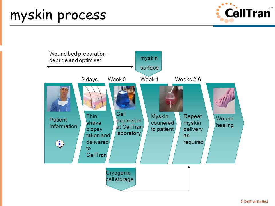 © CellTran Limited TM Patient Information Thin shave biopsy taken and delivered to CellTran Cryogenic cell storage myskin surface Cell expansion at CellTran laboratory Repeat myskin delivery as required Wound healing Wound bed preparation – debride and optimise* Myskin couriered to patient Week 0Week 1Weeks 2-6-2 days myskin process