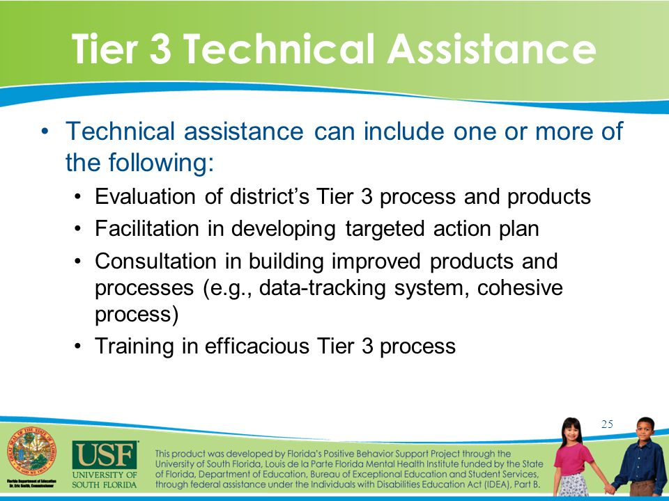 25 Tier 3 Technical Assistance Technical assistance can include one or more of the following: Evaluation of district's Tier 3 process and products Facilitation in developing targeted action plan Consultation in building improved products and processes (e.g., data-tracking system, cohesive process) Training in efficacious Tier 3 process
