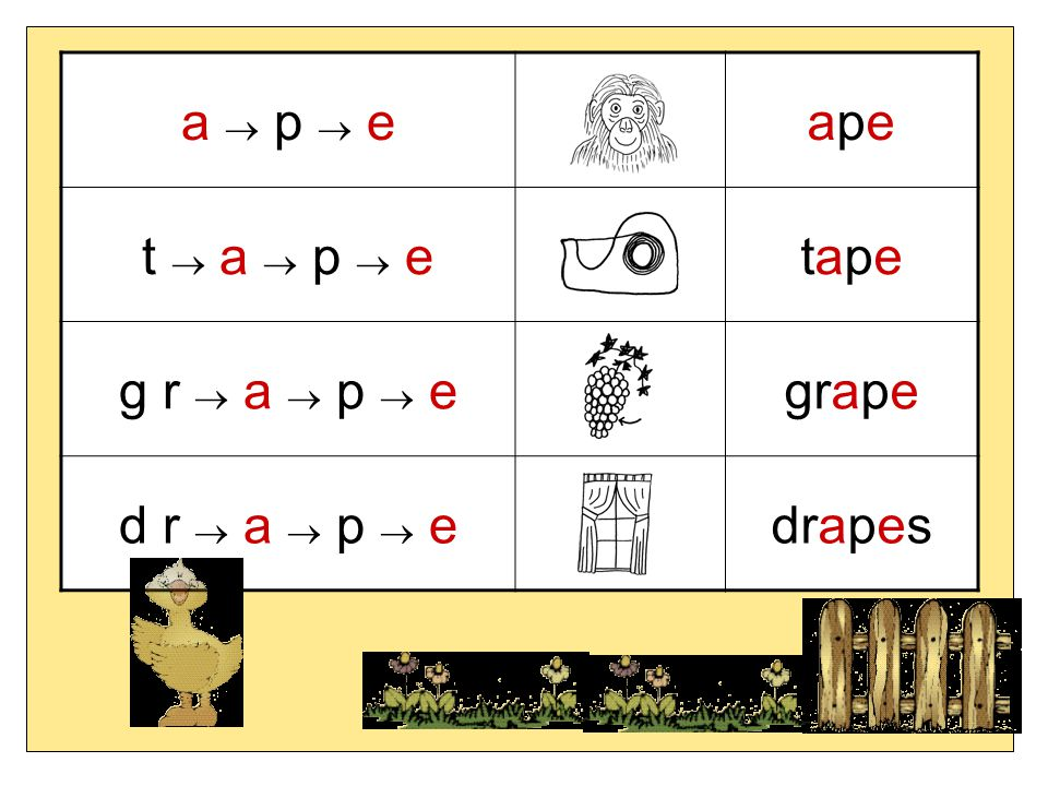 a  p  eapeape t  a  p  etapetape g r  a  p  egrape d r  a  p  edrapes