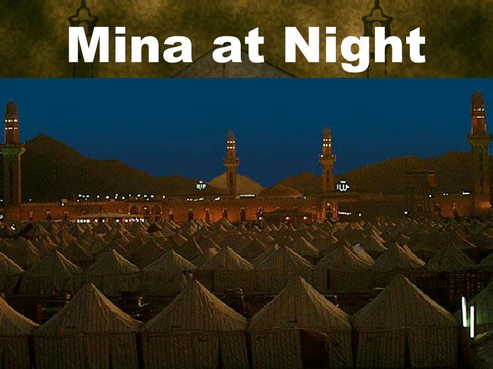 Mina at Night