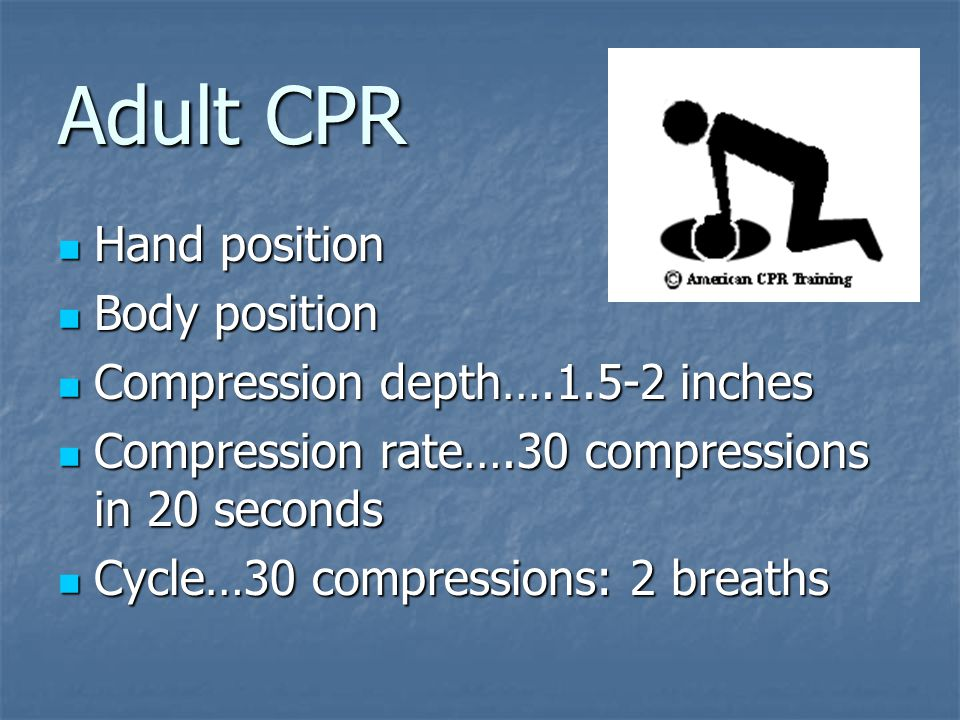 Adult CPR Hand position Hand position Body position Body position Compression depth….1.5-2 inches Compression depth….1.5-2 inches Compression rate….30 compressions in 20 seconds Compression rate….30 compressions in 20 seconds Cycle…30 compressions: 2 breaths Cycle…30 compressions: 2 breaths