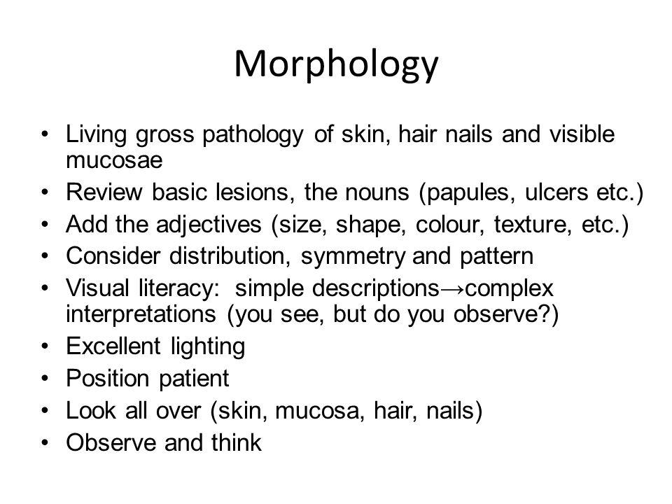 Pathology – high degree of clinical pathological correlation Assess depth of lesion in skin Dermatopathology