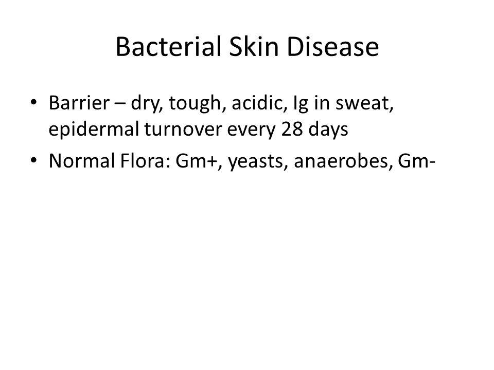 Bacterial Skin Diseases Impetigo – Bullous and non-bullous Folliculitis/furuncle Erysipelas/cellulitis Necrotizing Fasciitis Toxin diseases: SSSS, Scarlet fever, toxic shocks Superantigen: Staph.