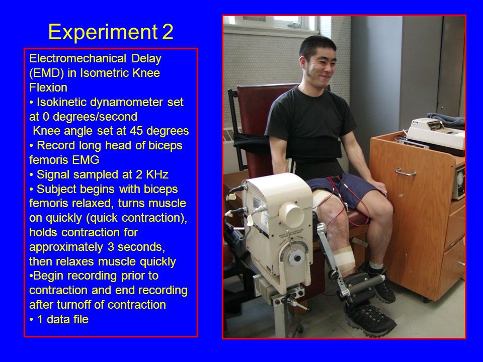 Electromechanical Delay (EMD) in Isometric Knee Flexion Isokinetic dynamometer set at 0 degrees/second Knee angle set at 45 degrees Record long head of biceps femoris EMG Signal sampled at 2 KHz Subject begins with biceps femoris relaxed, turns muscle on quickly (quick contraction), holds contraction for approximately 3 seconds, then relaxes muscle quickly Begin recording prior to contraction and end recording after turnoff of contraction 1 data file Experiment 2