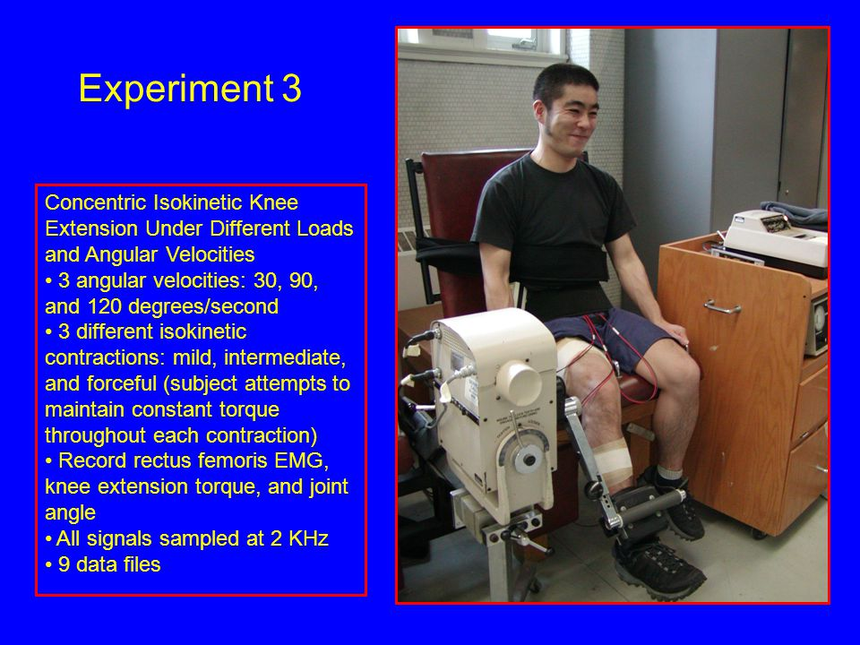 Concentric Isokinetic Knee Extension Under Different Loads and Angular Velocities 3 angular velocities: 30, 90, and 120 degrees/second 3 different isokinetic contractions: mild, intermediate, and forceful (subject attempts to maintain constant torque throughout each contraction) Record rectus femoris EMG, knee extension torque, and joint angle All signals sampled at 2 KHz 9 data files Experiment 3