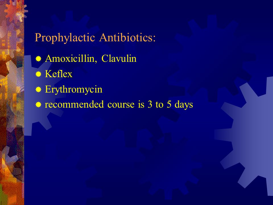 Prophylactic Antibiotics:  Amoxicillin, Clavulin  Keflex  Erythromycin  recommended course is 3 to 5 days
