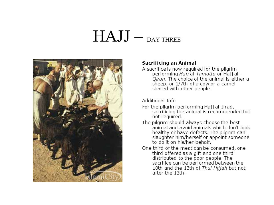 HAJJ – DAY THREE Sacrificing an Animal A sacrifice is now required for the pilgrim performing Hajj al-Tamattu or Hajj al- Qiran.
