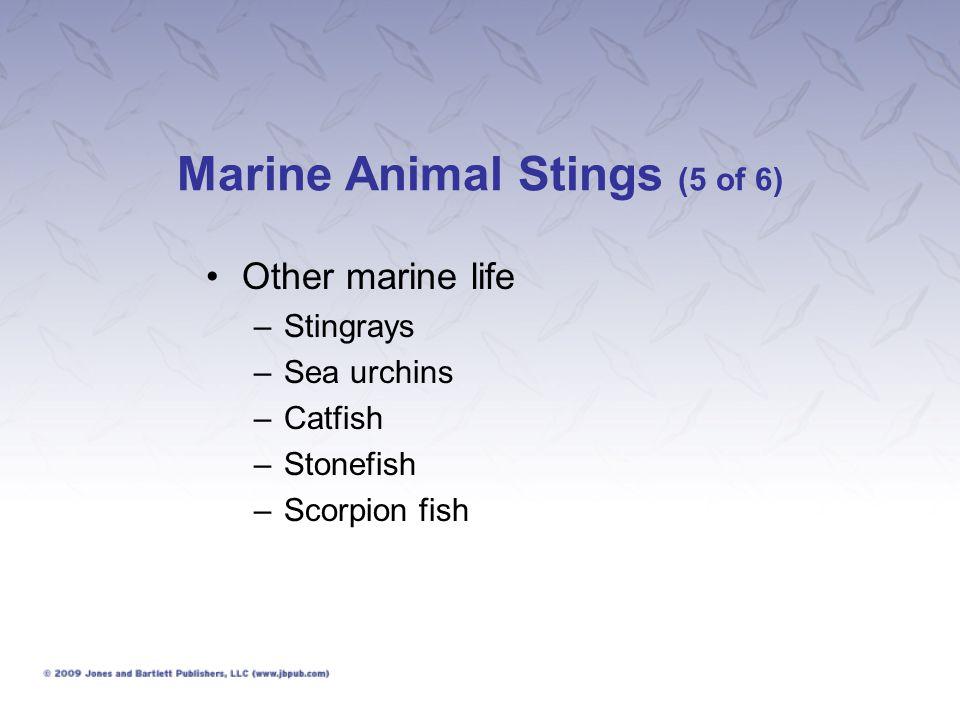 Marine Animal Stings (5 of 6) Other marine life –Stingrays –Sea urchins –Catfish –Stonefish –Scorpion fish