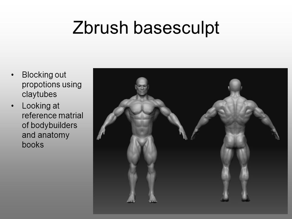 Zbrush basesculpt Blocking out propotions using claytubes Looking at reference matrial of bodybuilders and anatomy books