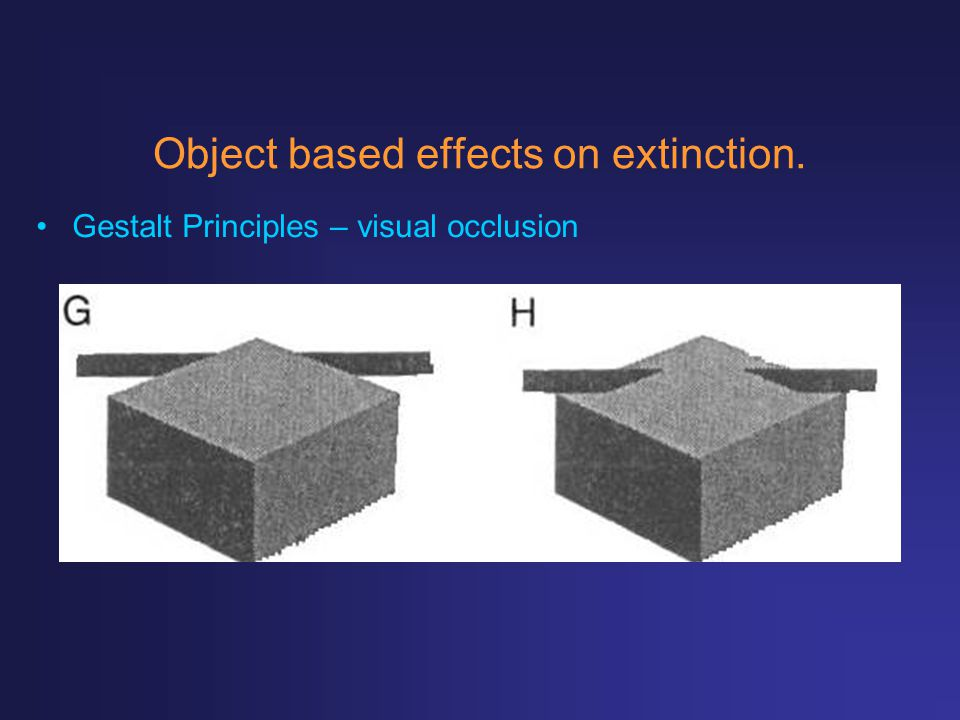 Object based effects on extinction. Gestalt Principles – visual occlusion