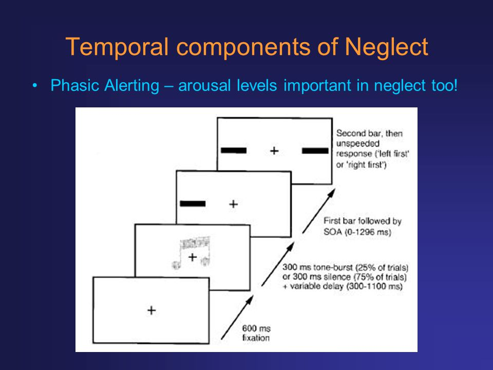 Temporal components of Neglect Phasic Alerting – arousal levels important in neglect too!