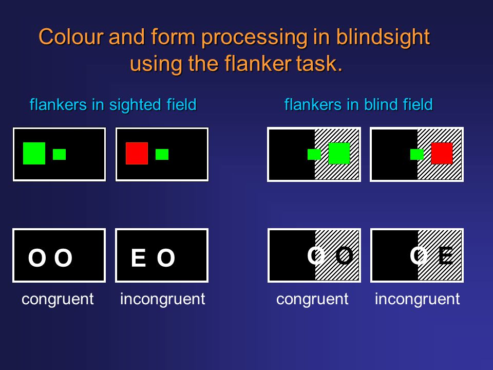 Colour and form processing in blindsight using the flanker task. flankers in sighted field flankers in blind field OOEO EOOO congruentincongruentcongr