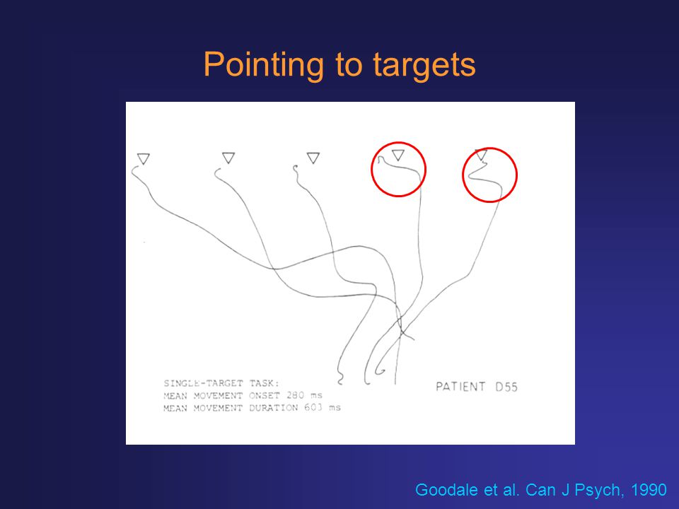 Pointing to targets Goodale et al. Can J Psych, 1990