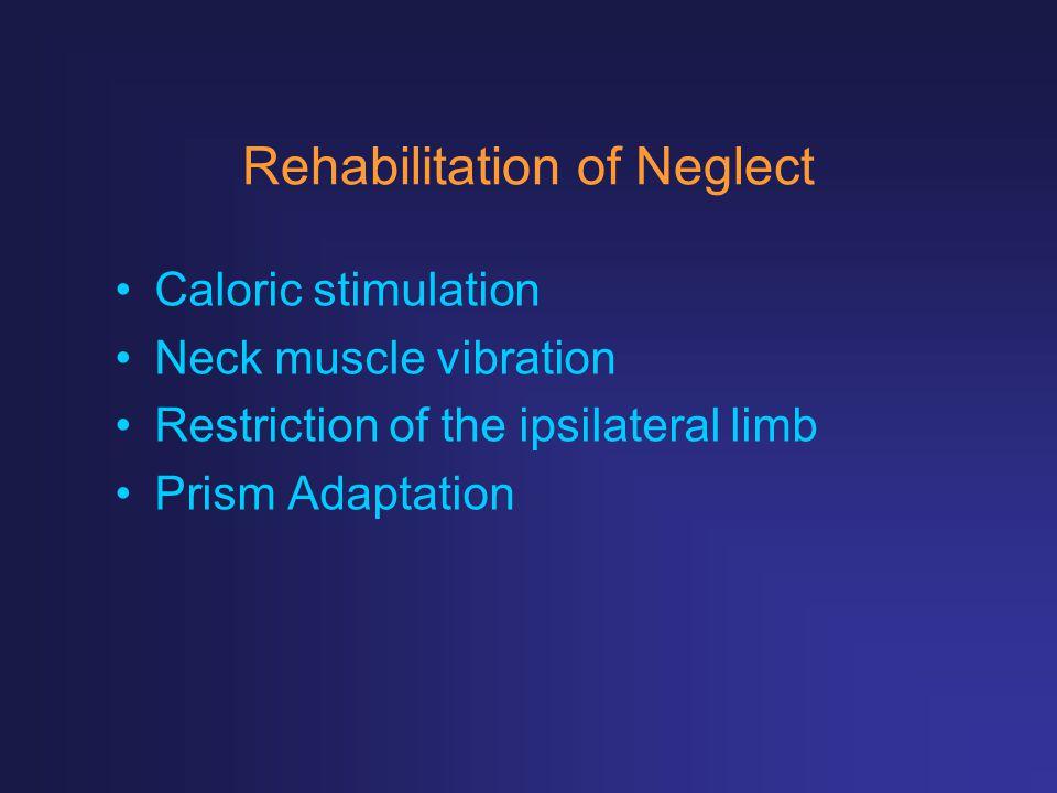 Rehabilitation of Neglect Caloric stimulation Neck muscle vibration Restriction of the ipsilateral limb Prism Adaptation