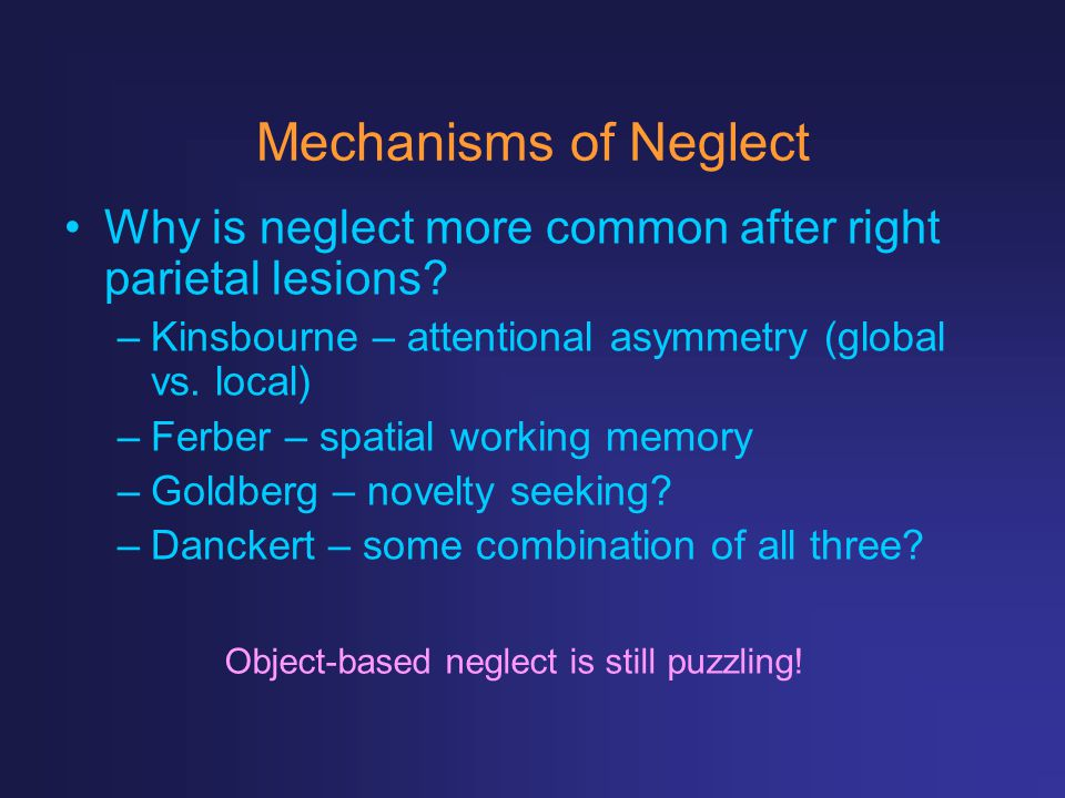 Mechanisms of Neglect Why is neglect more common after right parietal lesions? –Kinsbourne – attentional asymmetry (global vs. local) –Ferber – spatia