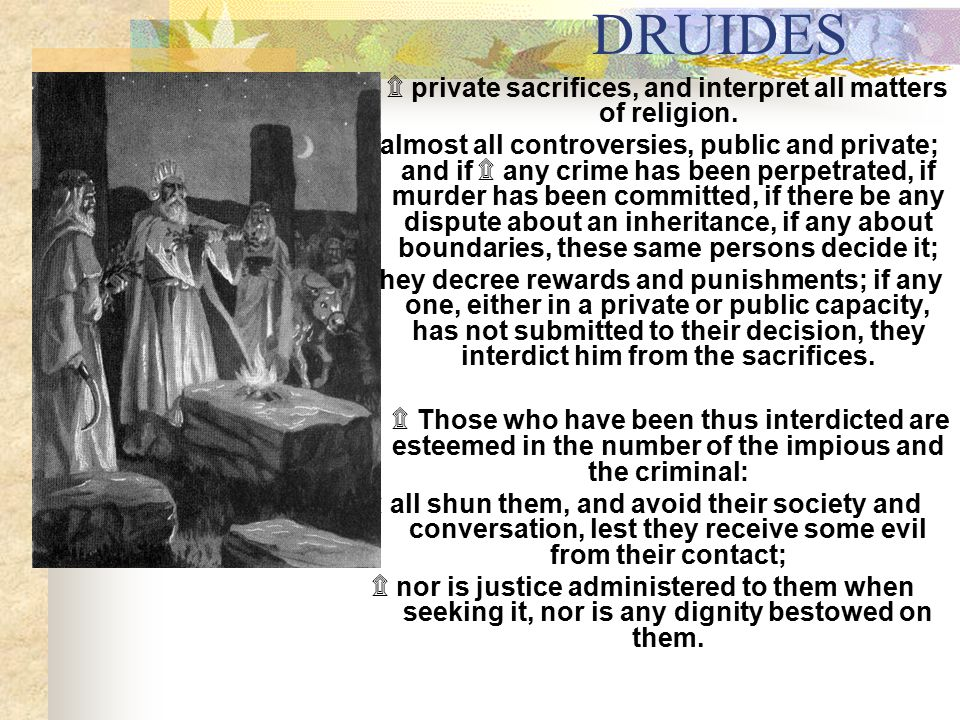 DRUIDES ۩ private sacrifices, and interpret all matters of religion.