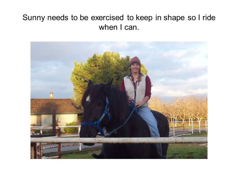 Sunny needs to be exercised to keep in shape so I ride when I can.