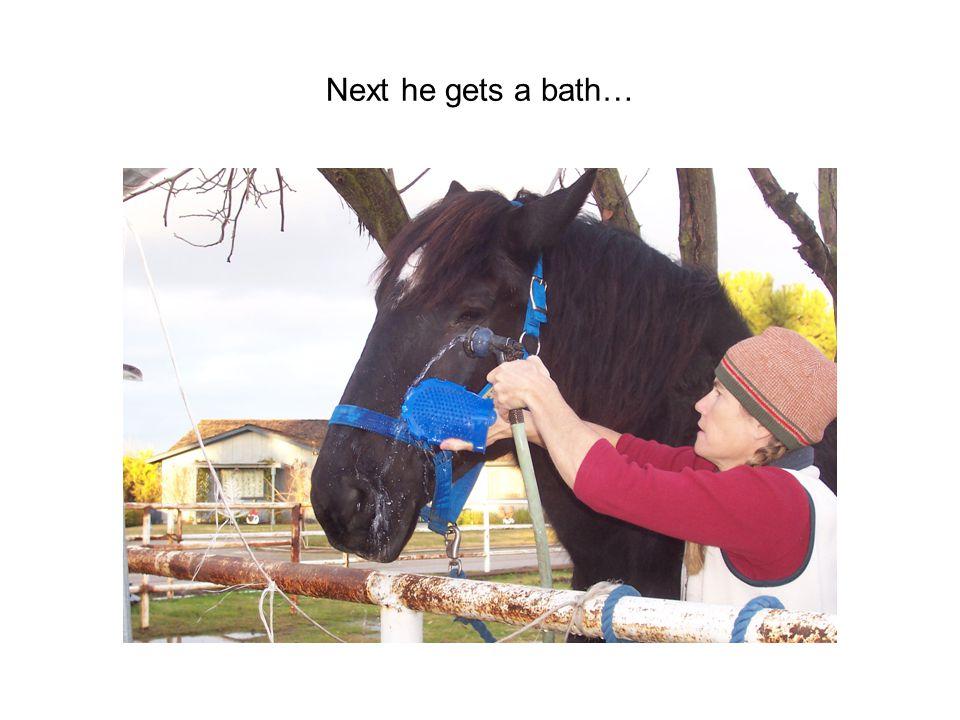 Next he gets a bath…