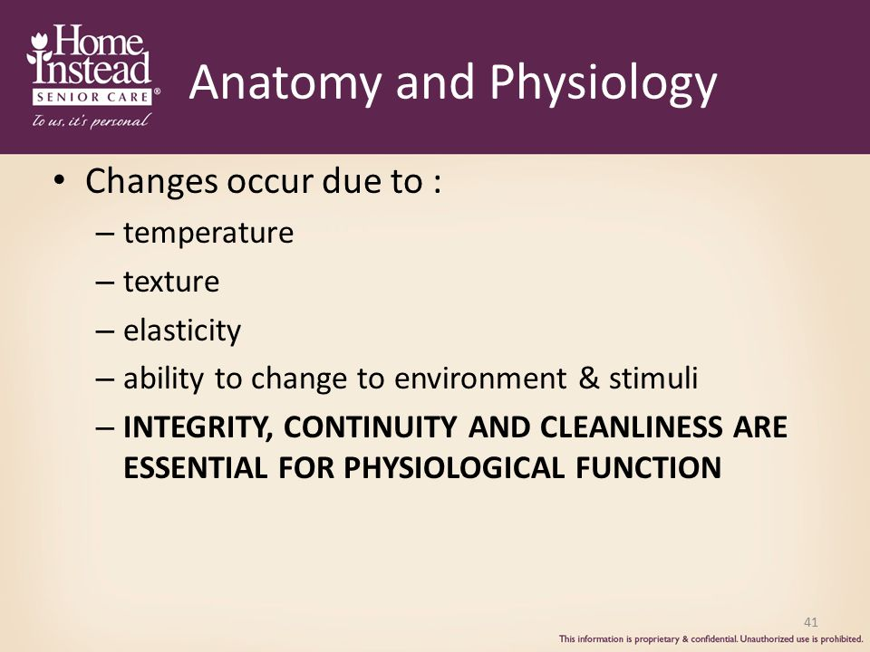 Anatomy and Physiology Changes occur due to : – temperature – texture – elasticity – ability to change to environment & stimuli – INTEGRITY, CONTINUITY AND CLEANLINESS ARE ESSENTIAL FOR PHYSIOLOGICAL FUNCTION 41