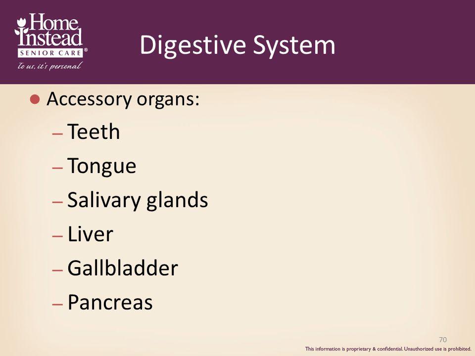 Digestive System Accessory organs: – Teeth – Tongue – Salivary glands – Liver – Gallbladder – Pancreas 70