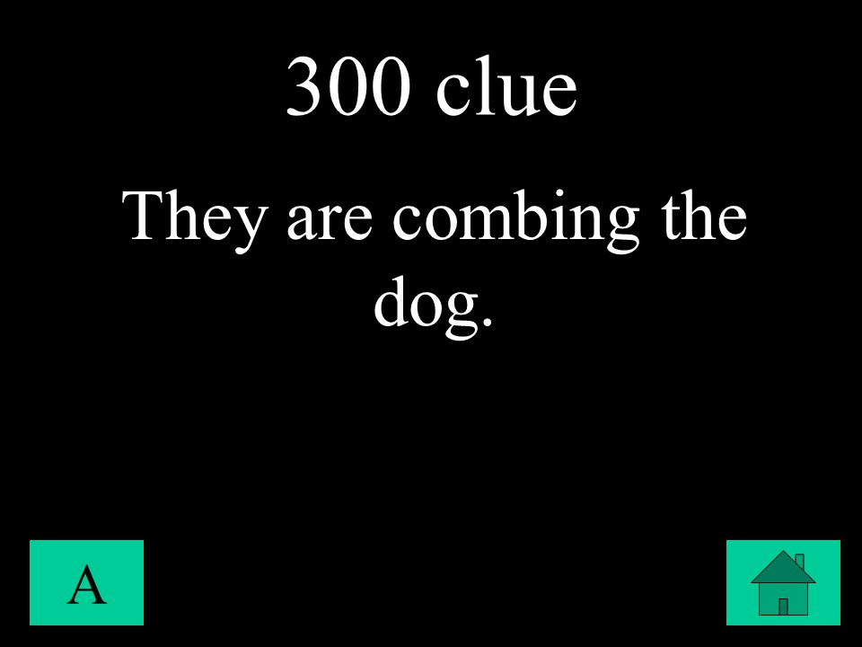 300 clue A They are combing the dog.