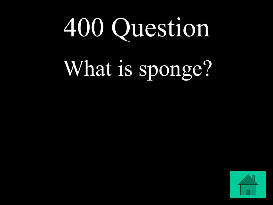 400 Question What is sponge