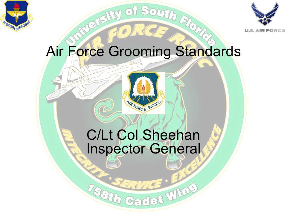 Air Force Grooming Standards C/Lt Col Sheehan Inspector General