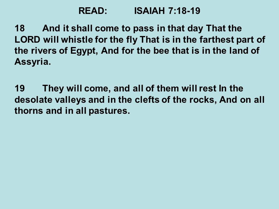 READ:ISAIAH 7:18-19 18And it shall come to pass in that day That the LORD will whistle for the fly That is in the farthest part of the rivers of Egypt, And for the bee that is in the land of Assyria.