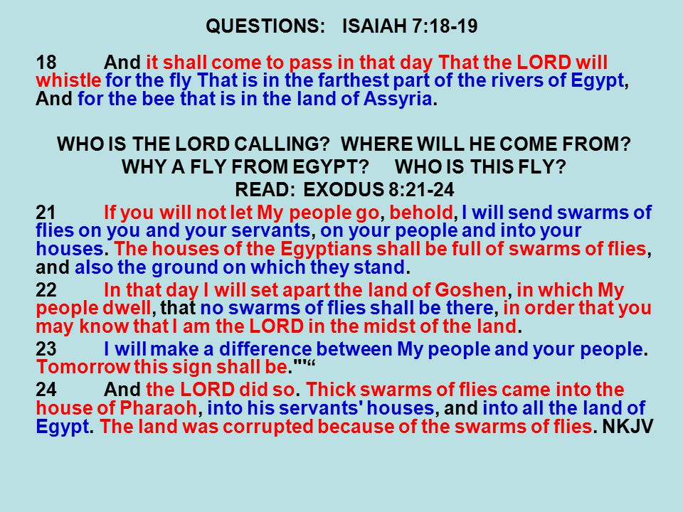 QUESTIONS:ISAIAH 7:18-19 18And it shall come to pass in that day That the LORD will whistle for the fly That is in the farthest part of the rivers of Egypt, And for the bee that is in the land of Assyria.
