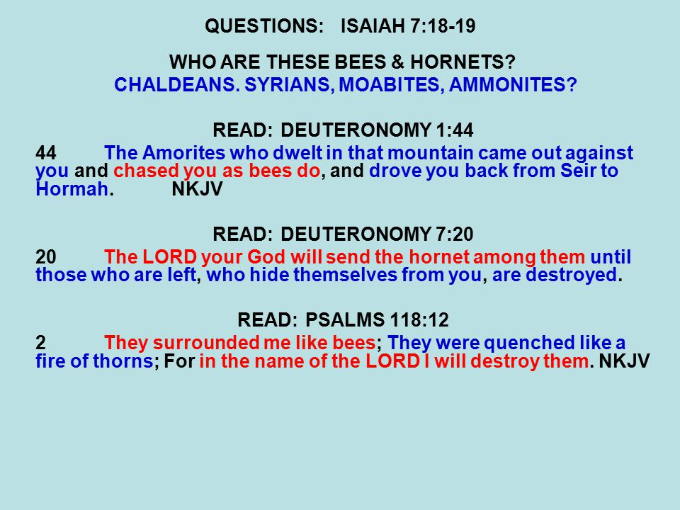 QUESTIONS:ISAIAH 7:18-19 WHO ARE THESE BEES & HORNETS? CHALDEANS. SYRIANS, MOABITES, AMMONITES? READ:DEUTERONOMY 1:44 44The Amorites who dwelt in that