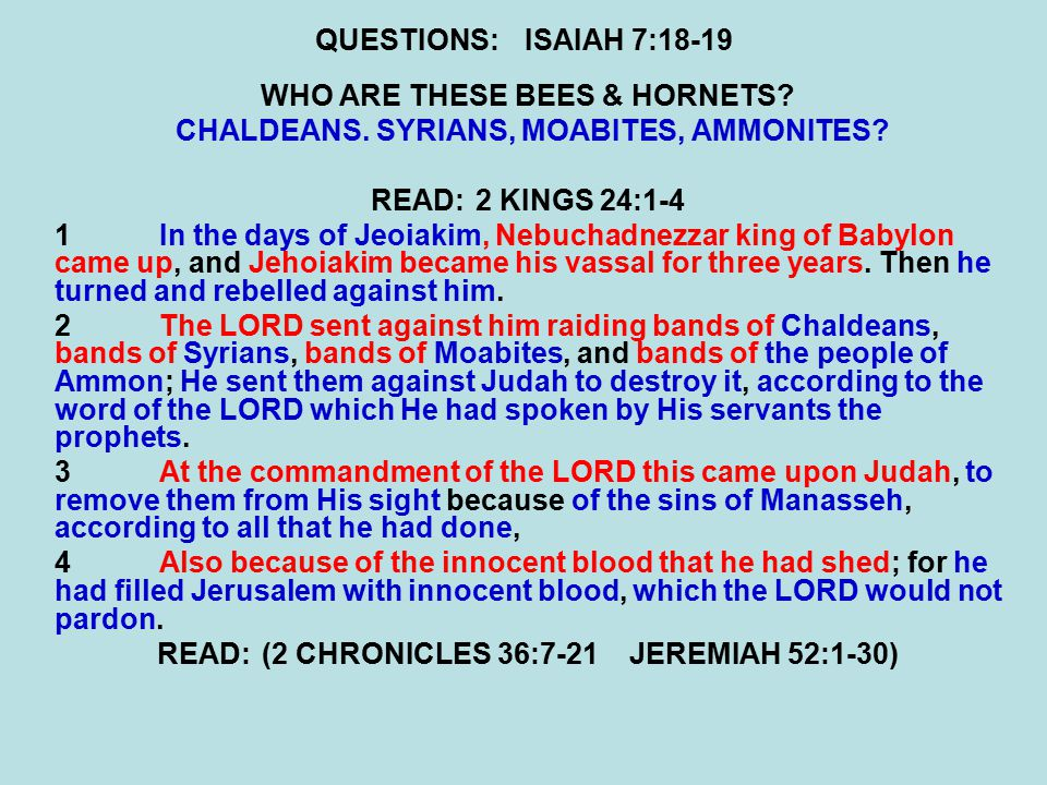 QUESTIONS:ISAIAH 7:18-19 WHO ARE THESE BEES & HORNETS.