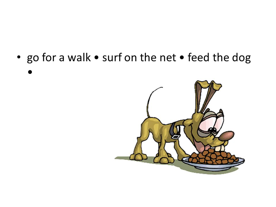 go for a walk surf on the net feed the dog