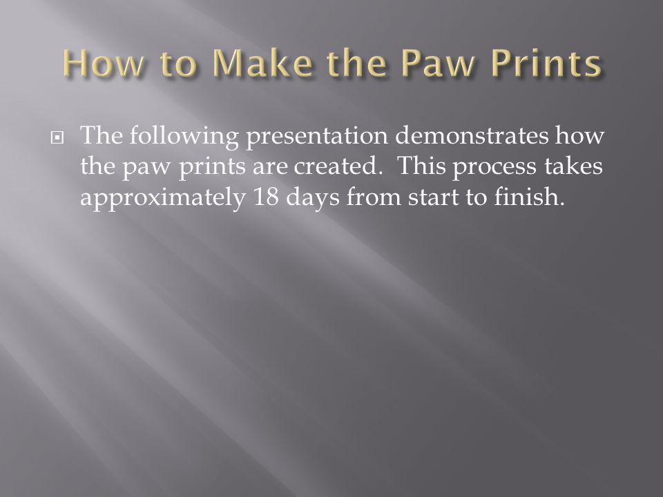  The following presentation demonstrates how the paw prints are created.