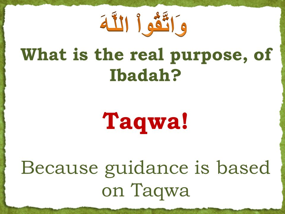 What is the real purpose, of Ibadah. Taqwa.