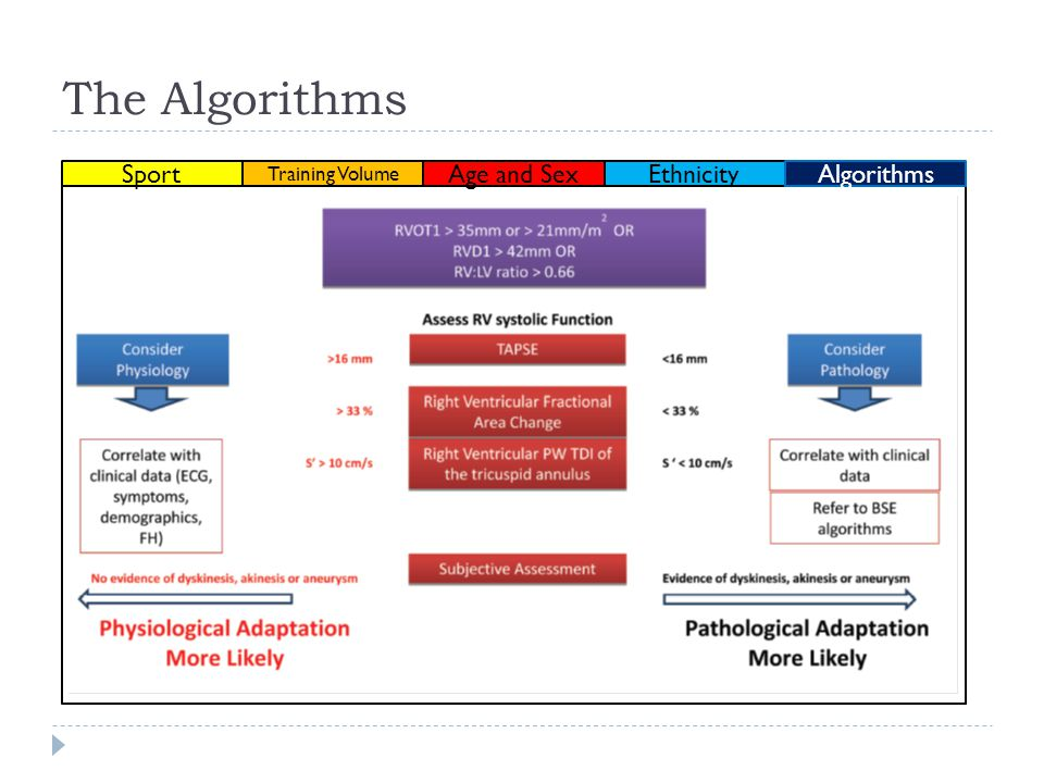The Algorithms Ethnicity Sport Training Volume Age and SexAlgorithms