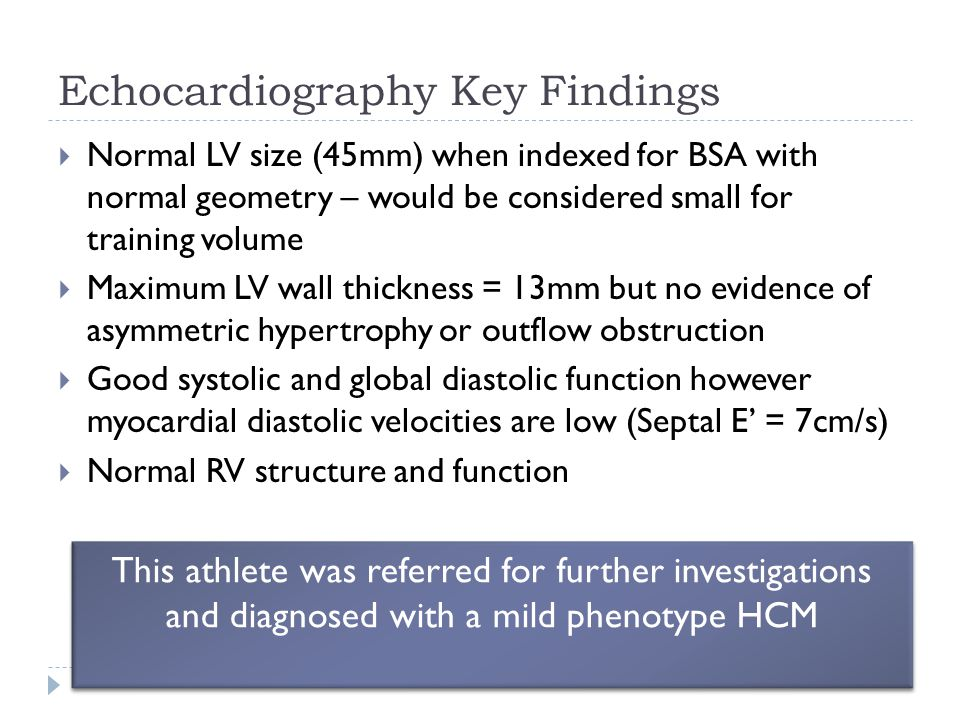 Echocardiography Key Findings  Normal LV size (45mm) when indexed for BSA with normal geometry – would be considered small for training volume  Maxi