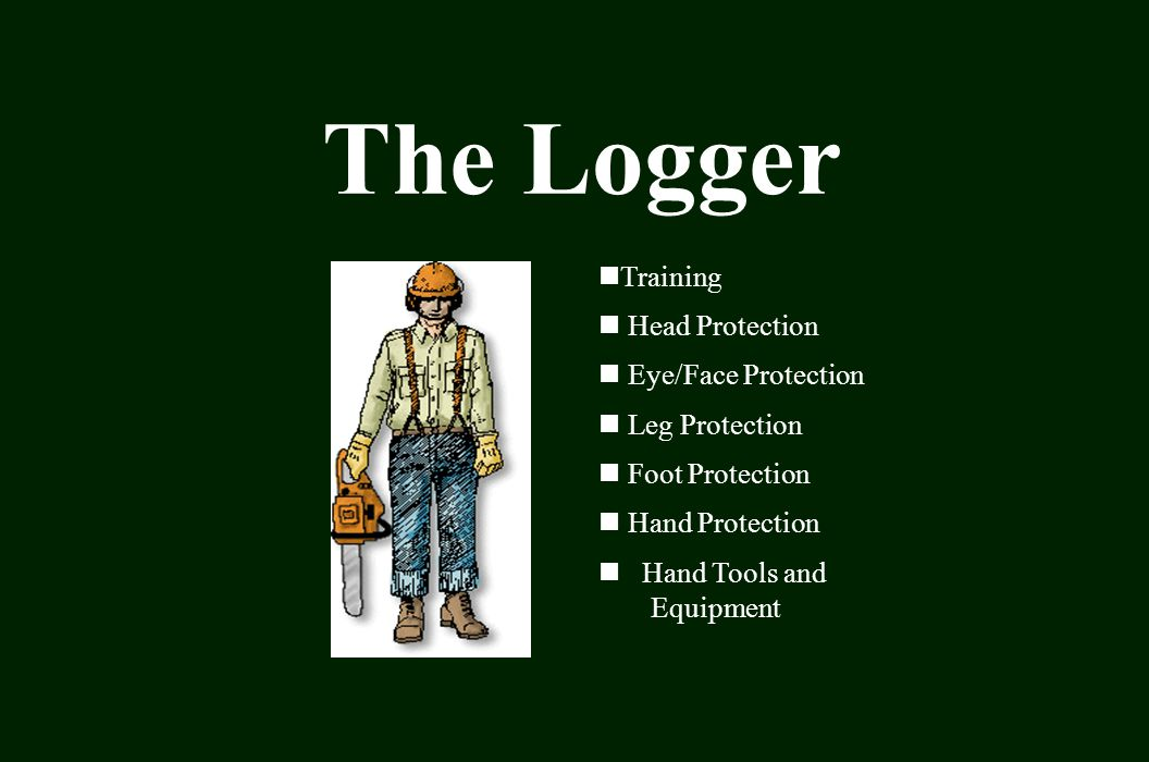 The Logger Training Head Protection Eye/Face Protection Leg Protection Foot Protection Hand Protection Hand Tools and Equipment
