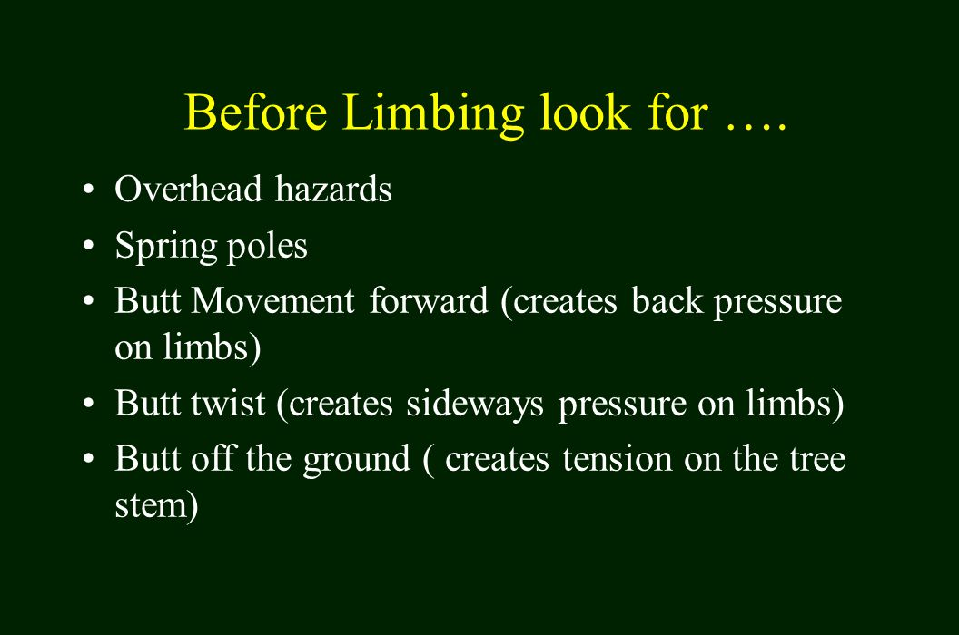 Before Limbing look for ….