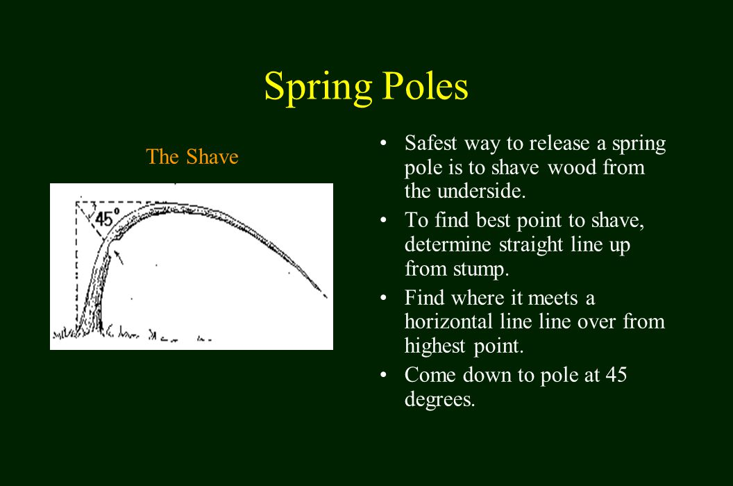 Spring Poles Safest way to release a spring pole is to shave wood from the underside.