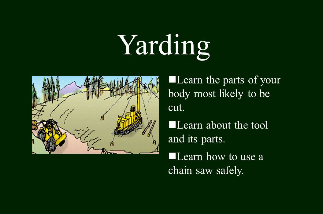 Yarding Learn the parts of your body most likely to be cut.